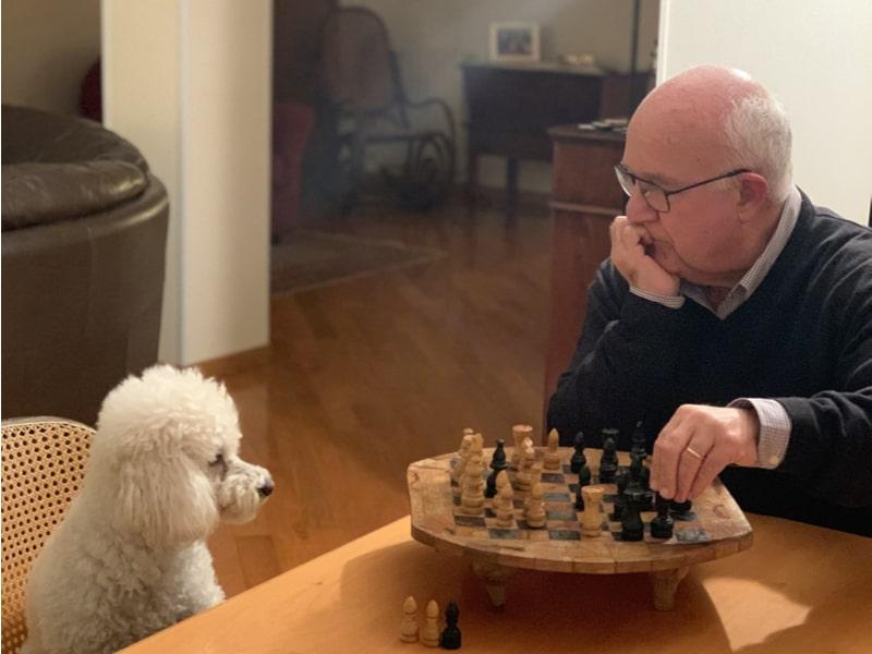 Un uomo e un cane davanti alla scacchiera