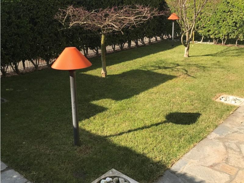 Un bel giardino curato