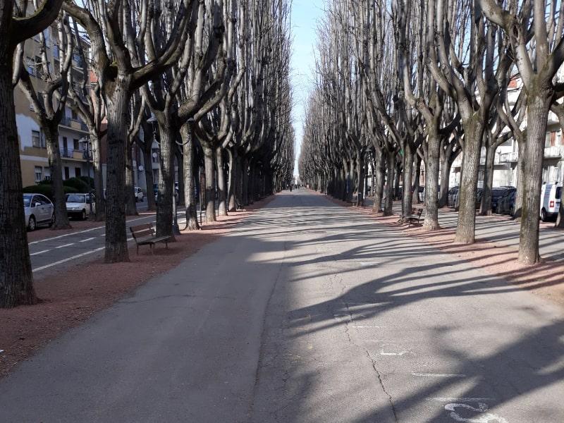 Viale Rimembranza a Vercelli