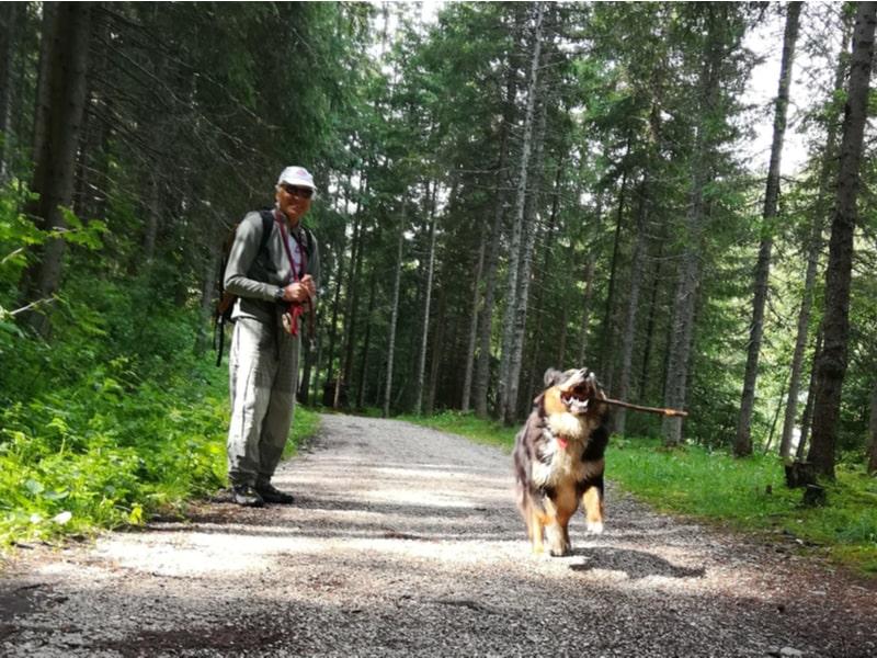 Un uomo e un cane a passeggio nei boschi