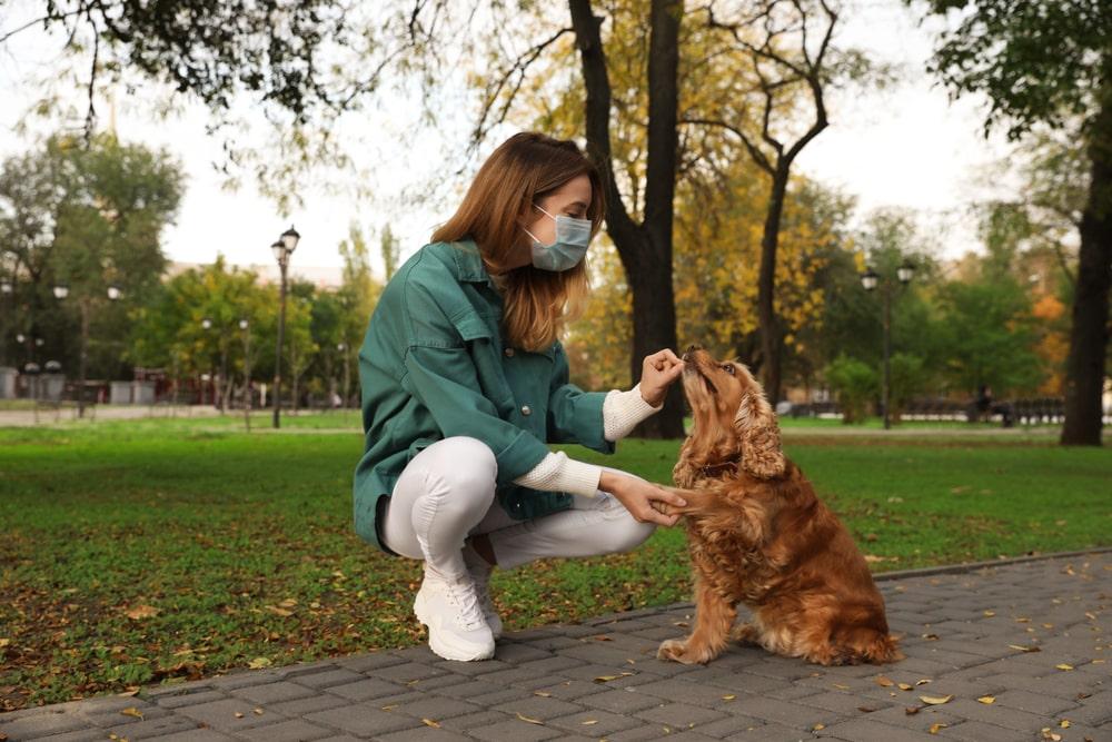 Volontaria con mascherina e cane