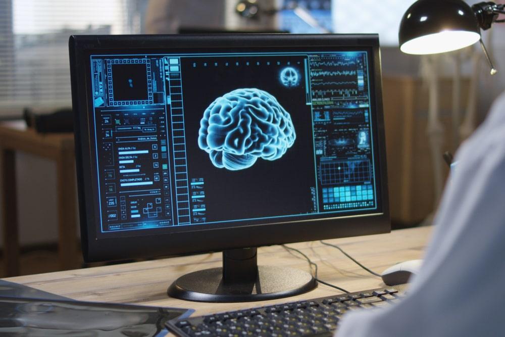 Lo studio di un cervello al computer