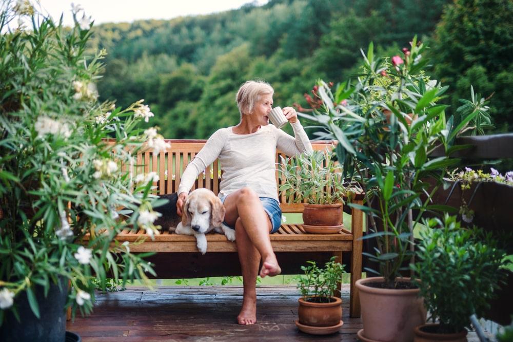 Una donna e il suo cane su una panchina