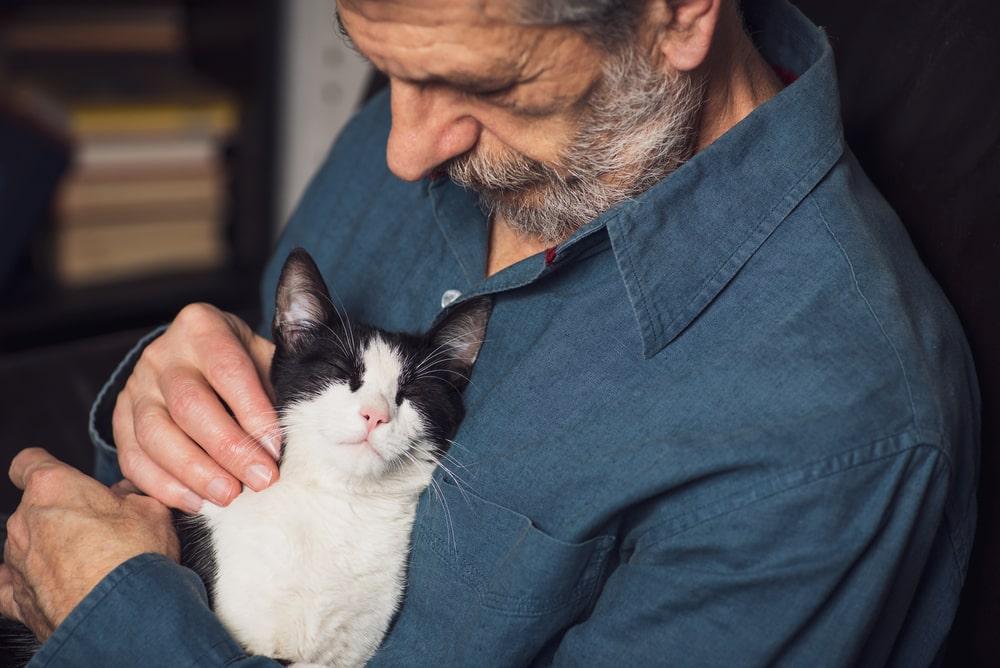 gatto in braccio ad un senior