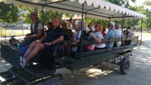 50&Più Pisa gita in carrozza san rossore